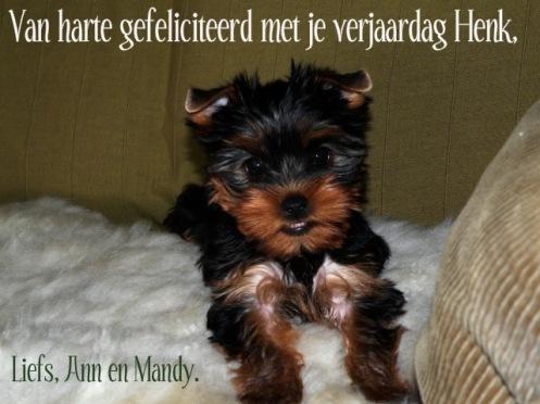 Mandy10wekenzogoedmoeder10juni20-2
