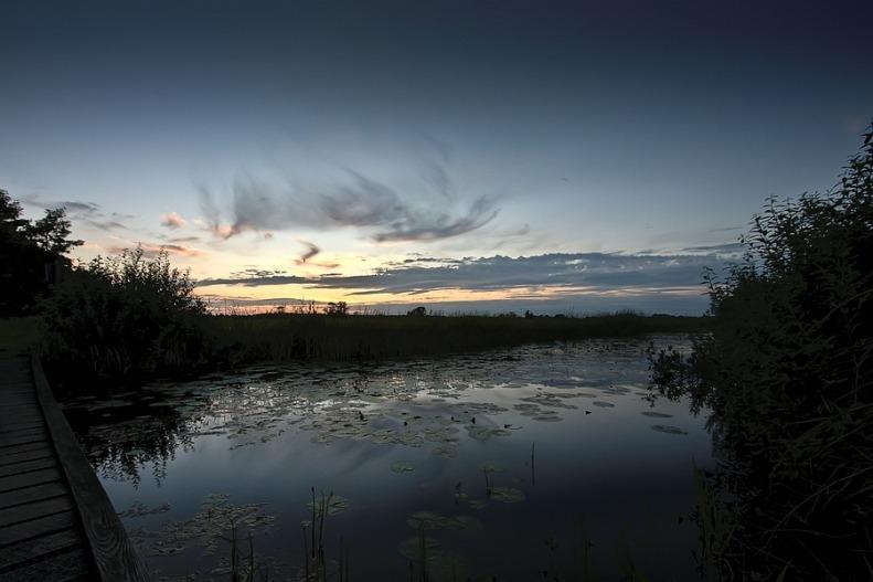2010-08-21 Landschap 01