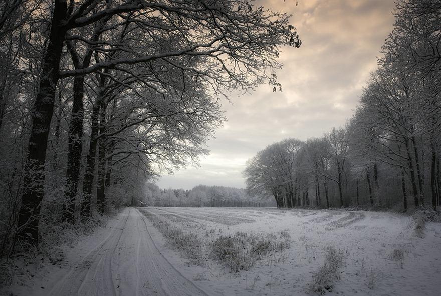 2010-12-21 Winter 02 Color Efex
