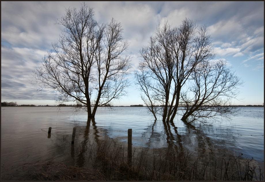 2011-01-16 Hoog water IJssel 01