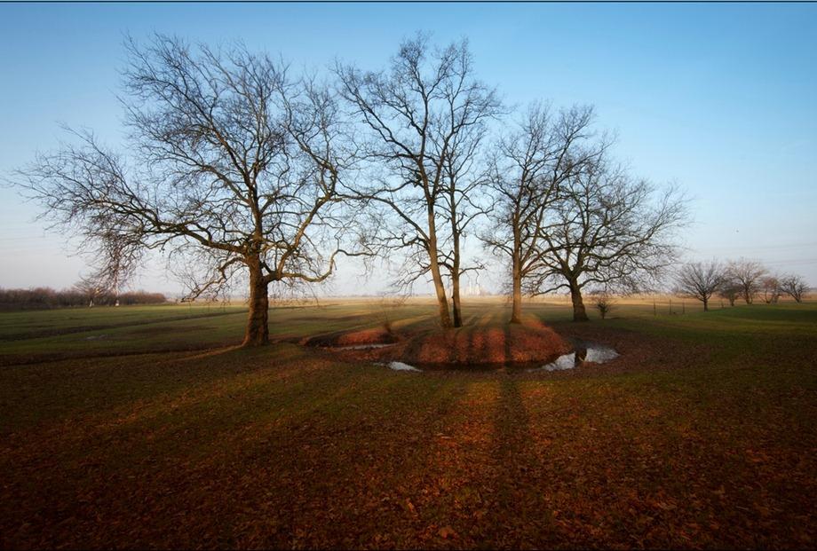 2011-02-17 Park Sparrenlaan