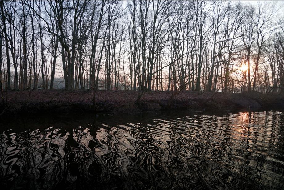 2011-02-17 Apeldoorns Kanaal Hattem
