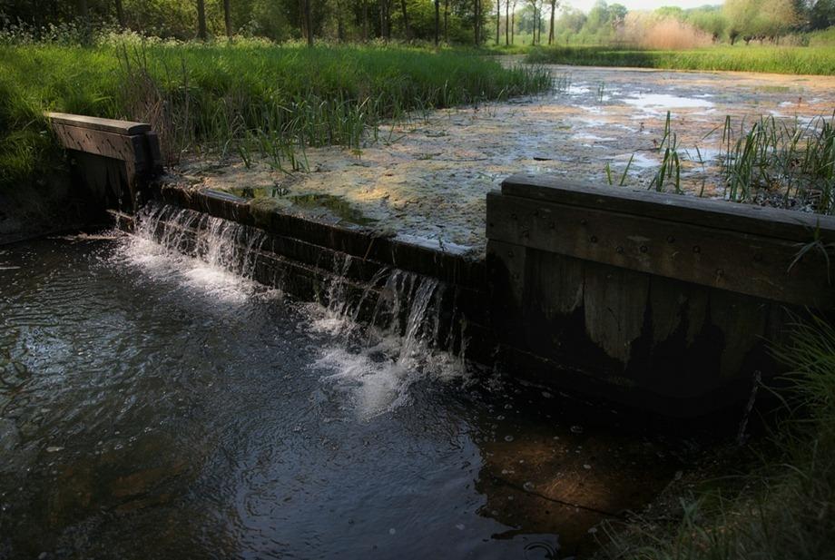 Watertrap 01