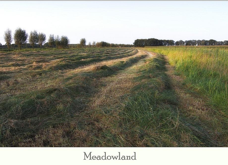 Hooiland 01