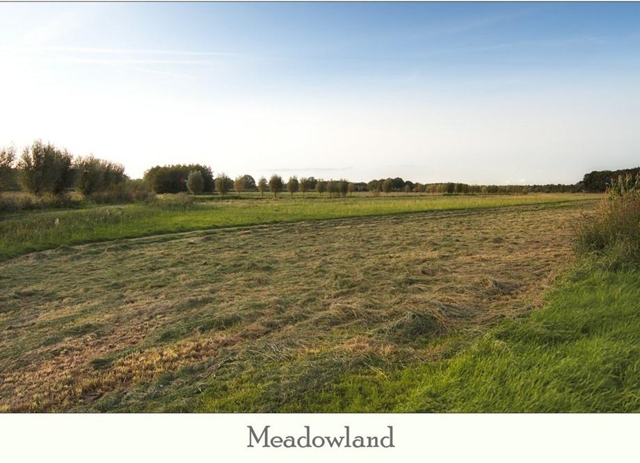 Hooiland 02