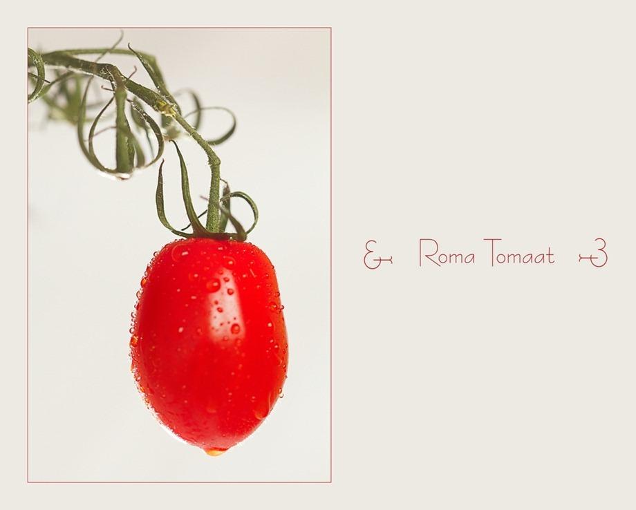 RomaTomaat 01