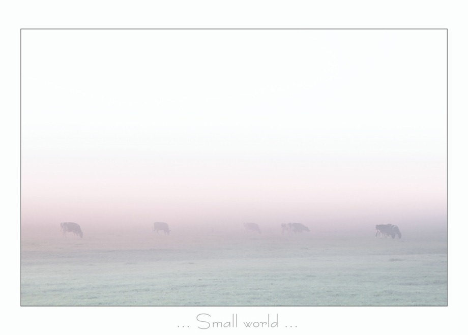 Mist 02