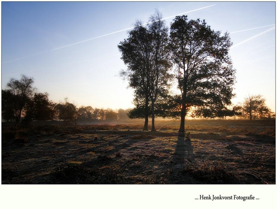 2011-10-22 Takkenhoogte Balkbrug 02