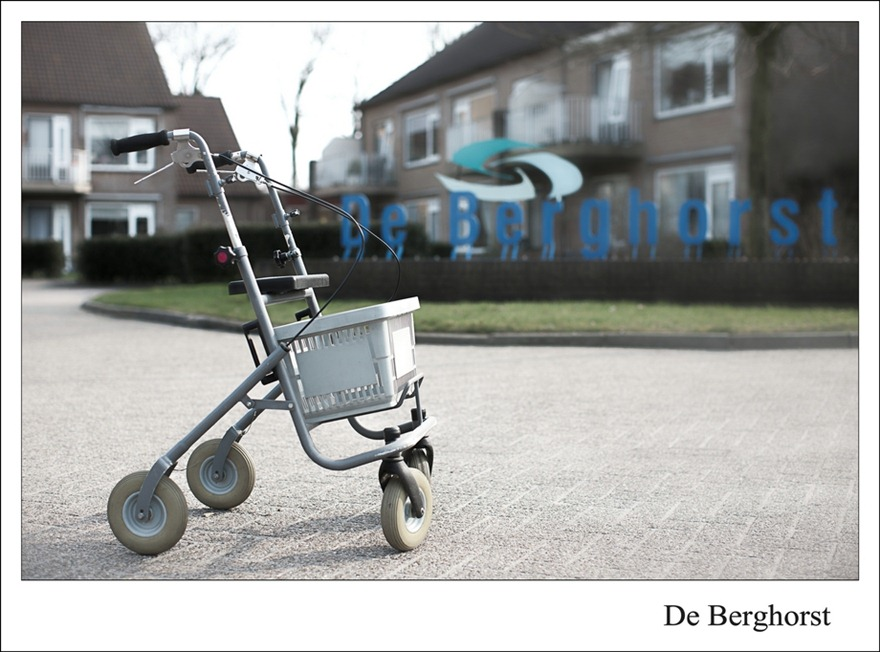 Staphorst  Berghorst