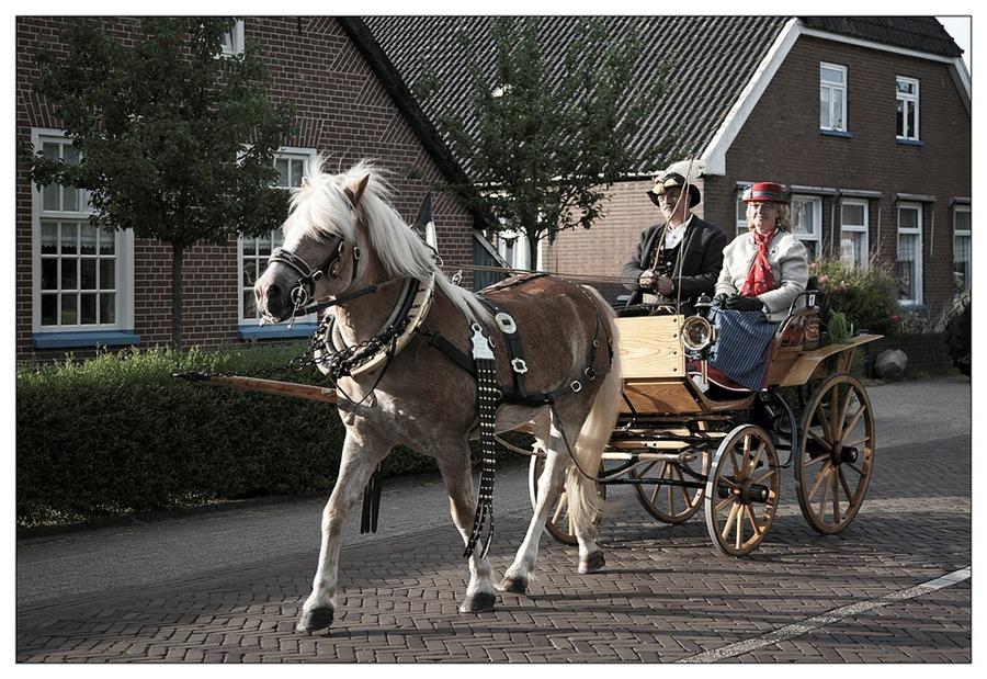 Staphorst Koetsentocht 2012