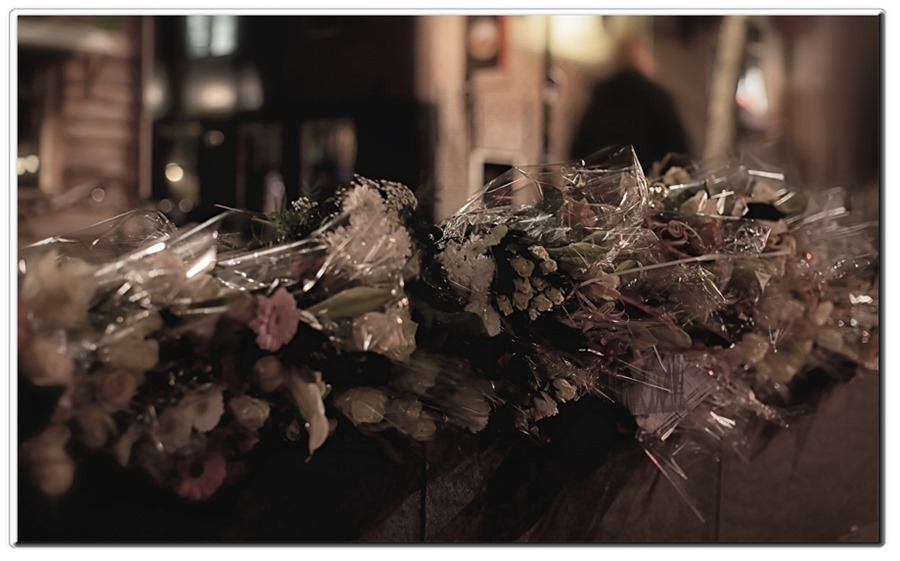 Fleur Bloemen  Stille Tocht