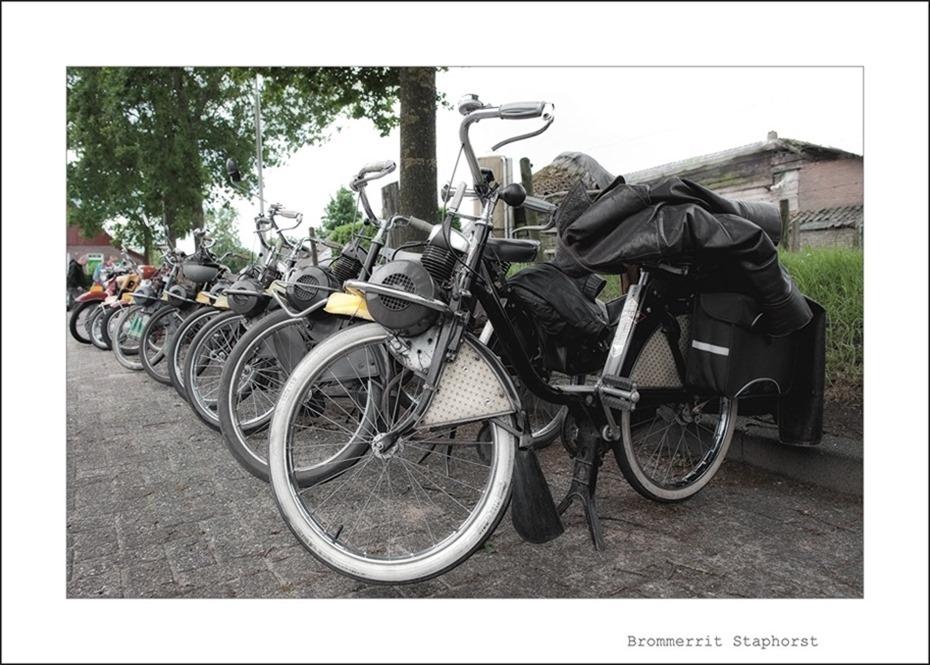Brommerrit Staphorst 02