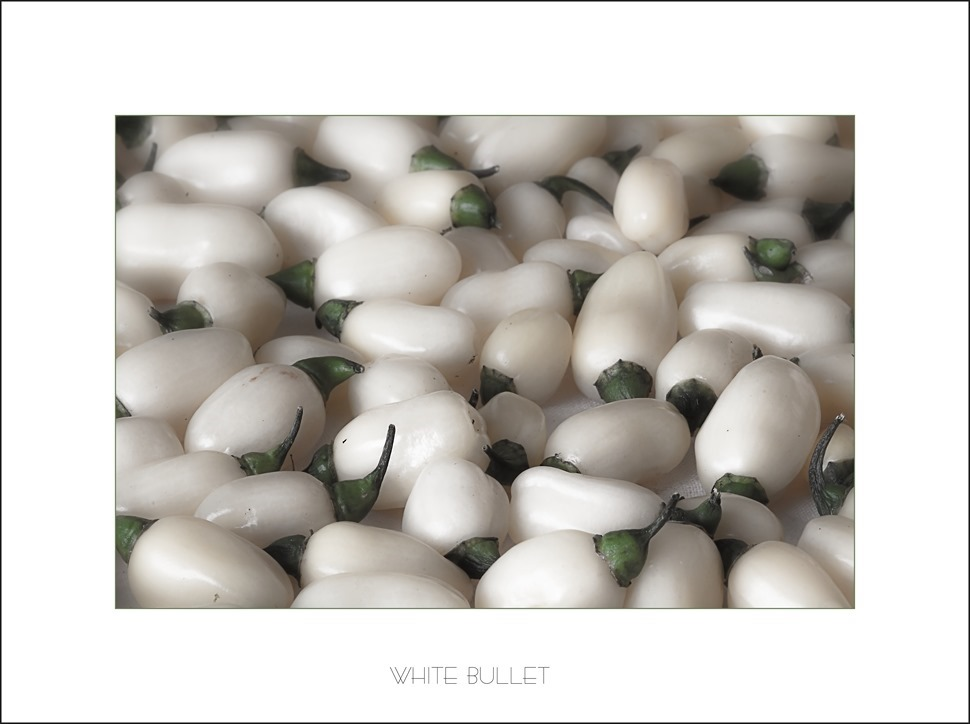 White Bullet   Habanero White