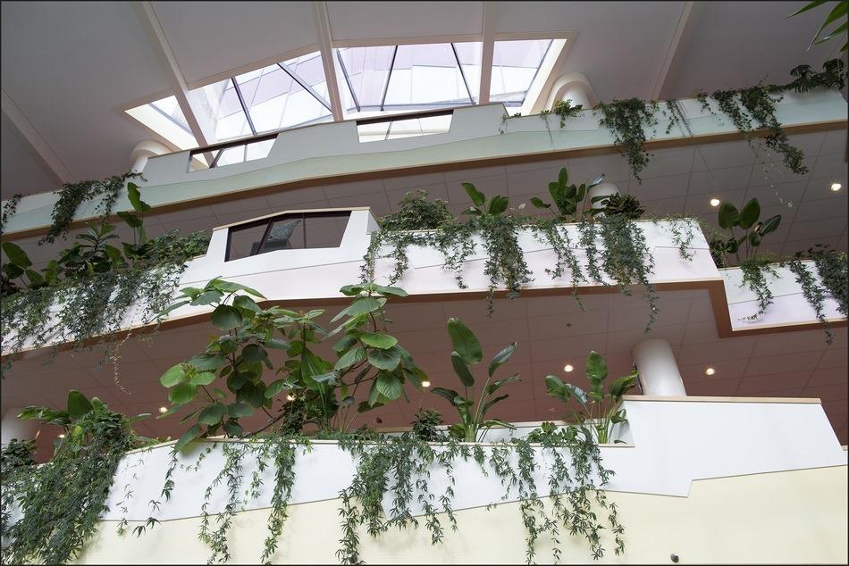 Isala Klinieken Zwolle Foto Architectuur
