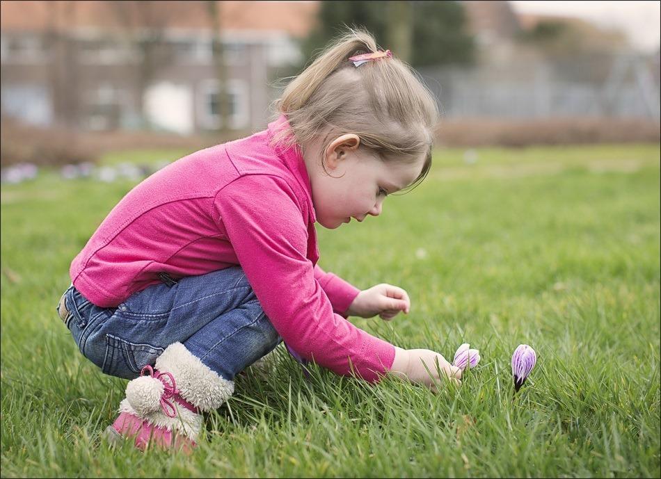 Pluk de dag Foto bloemen plukken
