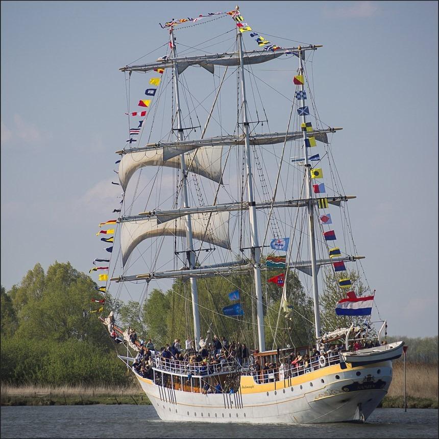 Sail Kampen 2014 Foto Sail Kampen 02