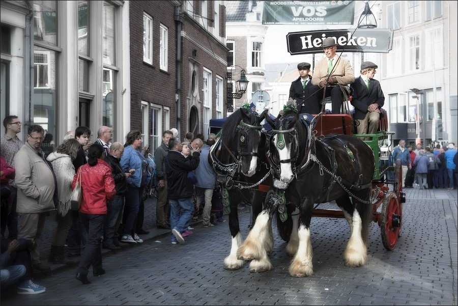 Nationale Bokbierdag Zutphen Foto Bokbierdag Zutphen Foto Bokbierdag Foto Bokbierfeest Foto Koetsen