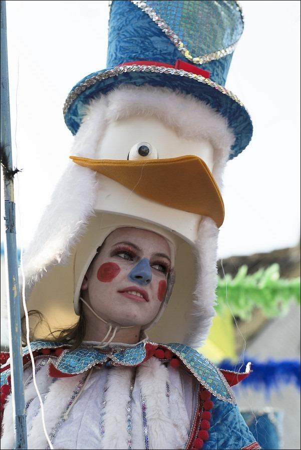 Carnaval 2015 Foto Carnaval Zwolle Foto Carnavalsoptocht Zwolle Foto Carnaval