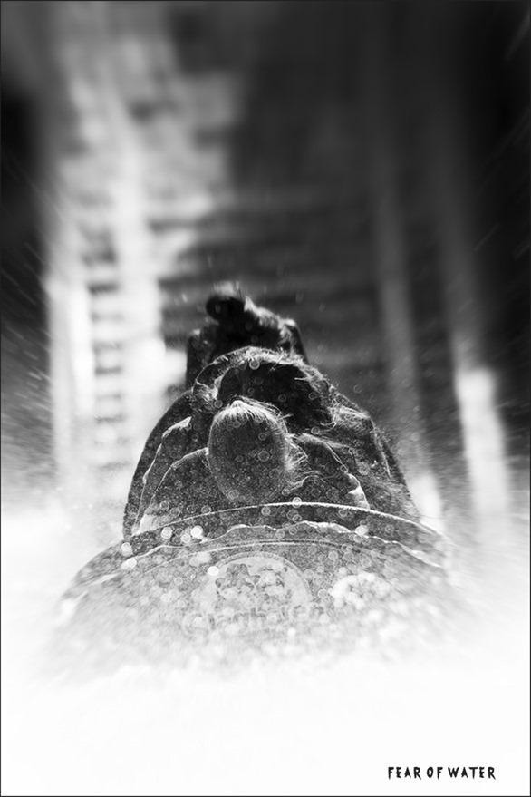Aquafobie Foto Hydrofobie Foto Watervrees Foto Waterangst Foto Angst voor Water Foto Angst Overwinnen Foto Ponypark Slagharen Foto Ripsaw Falls Foto Attractiepark Slagharen