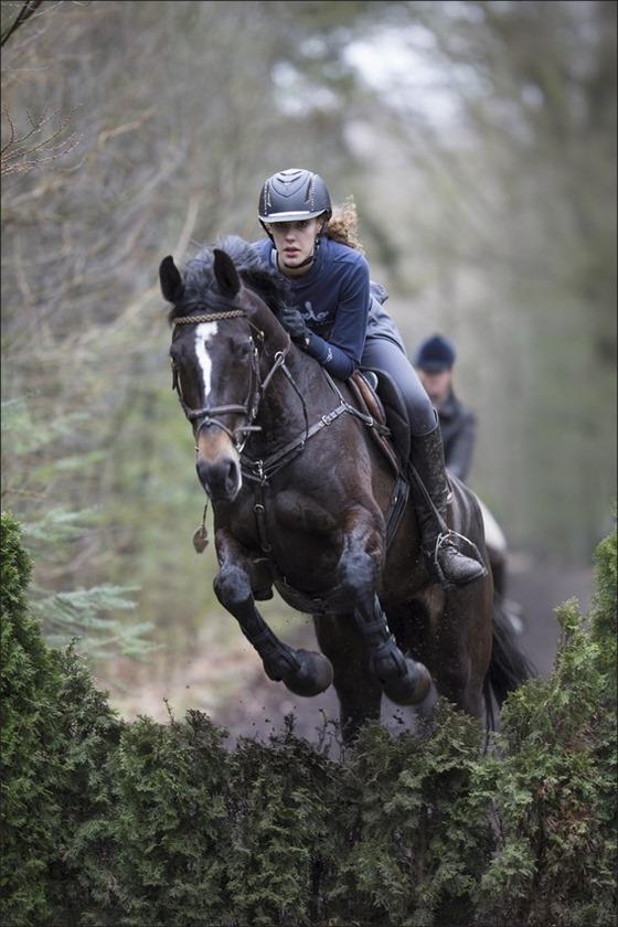 Boscross Staphorst Foto Staphorst Foto Staphorst Bosrit Foto Oefencross Foto Bosrit Foto Bosrit voor paarden en pony's 04