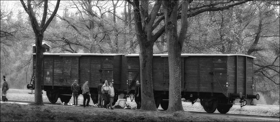 Kamp Westerbork Foto Wagons Kamp Westerbork Foto Goederenwagons terrein Westerbork Foto Sprekend Monument Foto Doorvoerkamp Westerbork Foto Herinneringscentrum Kamp Westerbork