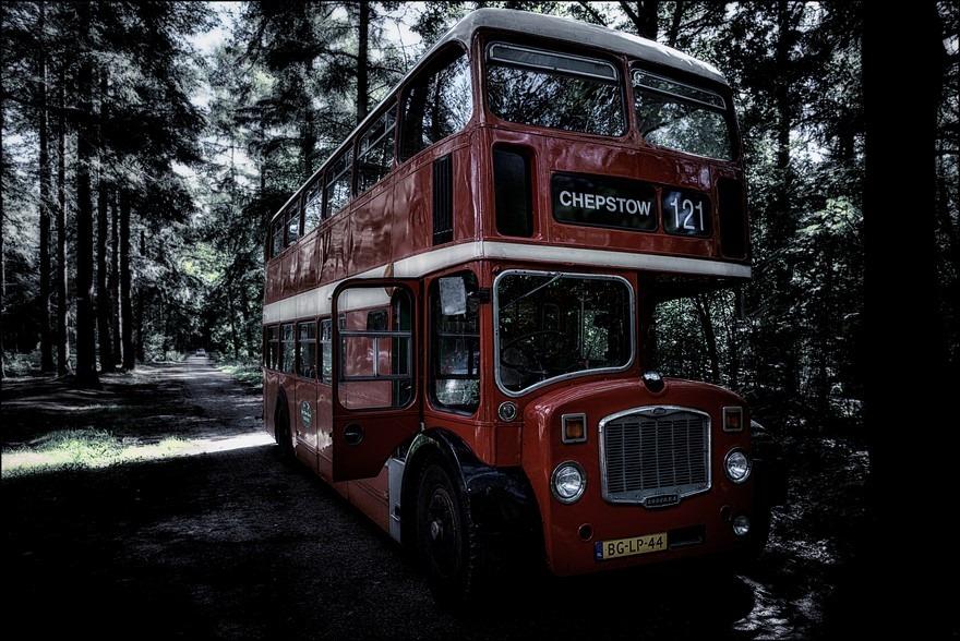 Staphorst Foto Staphorster Bos Foto Engelse Bus Foto Engelse Dubbeldekker Foto Londense Bus Foto Londense Dubbeldekker Foto Rode Dubbeldekker