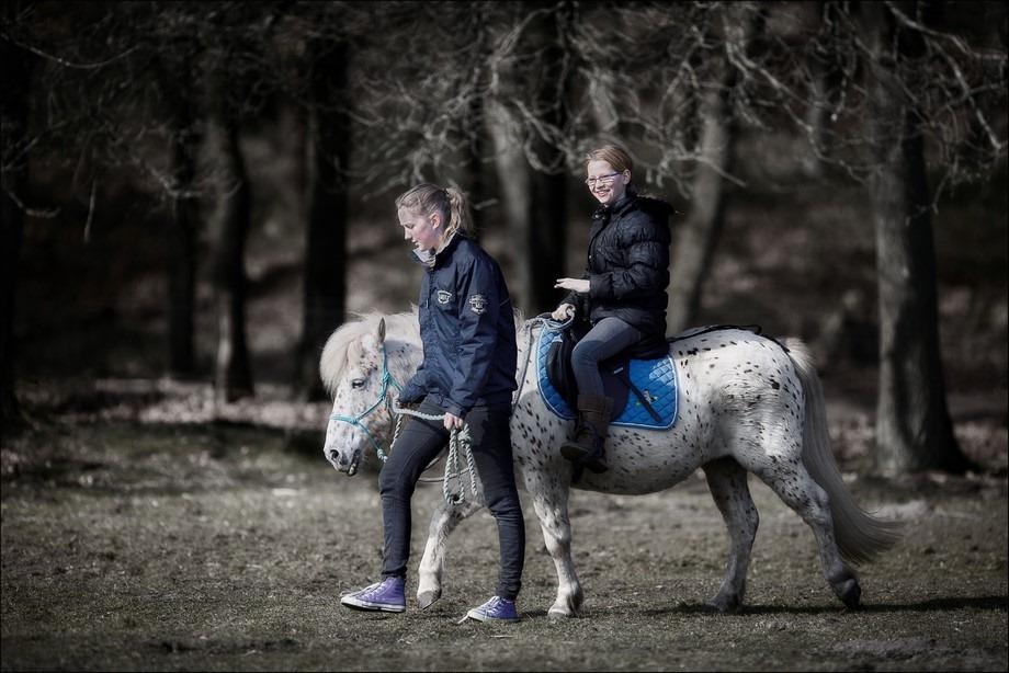 Ponyrijden Foto Ritje op een pony Foto Pony Rijden Foto Ponyrijden voor kinderen Foto Lammetjesdag Loenen Foto Lammetjesdag Loenermark Foto Lammetjesdag 2016 Foto Lammetjesdag