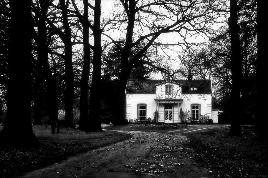 Wonen In Wit : Wonen in het bos henk s fotospace