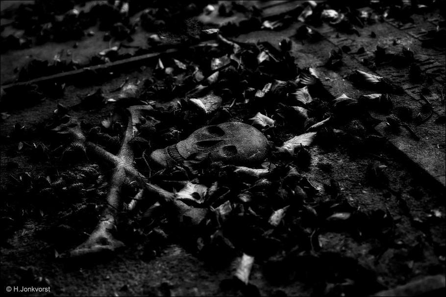 Crossbones Foto Cross Bones Foto Gekruiste Botten Foto Gevaarsymbool Foto Schedel Foto Oude Grafplaat Foto Historische Grafplaat Foto Schedel met Gekruiste Botten