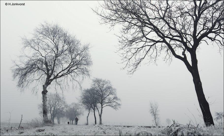 Staphorst, Staphorsterveld, Oude Achthoevenweg, winters landschap, laag standpunt, laag standpunt fotograferen, Fujifilm XT2
