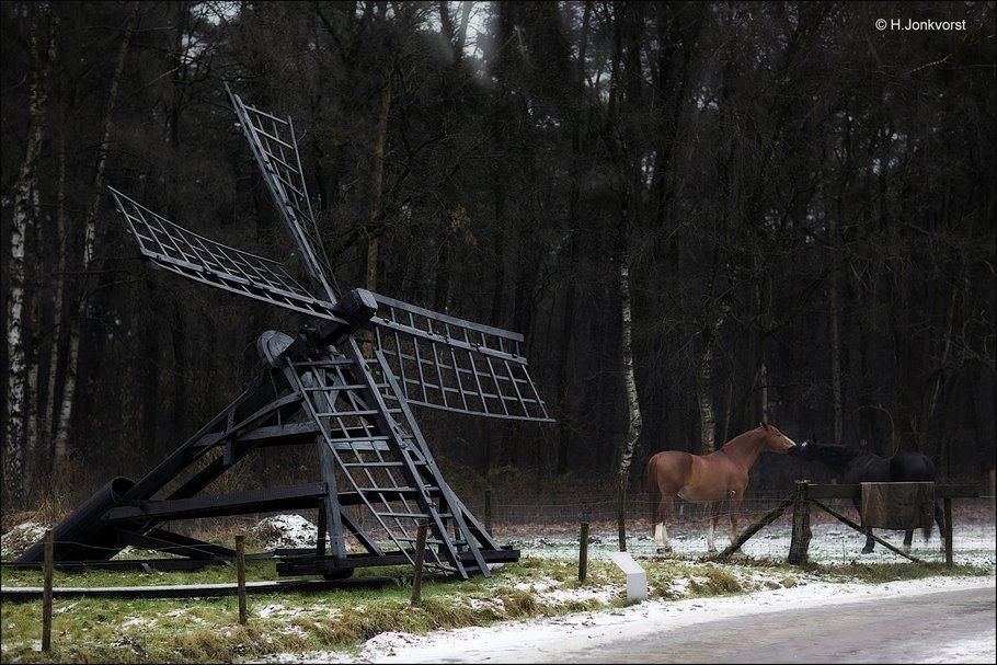 Openluchtmuseum Arnhem, Nederlands openluchtmuseum, openluchtmuseum, openluchtmuseum winter, openluchtmuseum Arnhem winter, Tjasker, windwatermolen, molens in openluchtmuseum