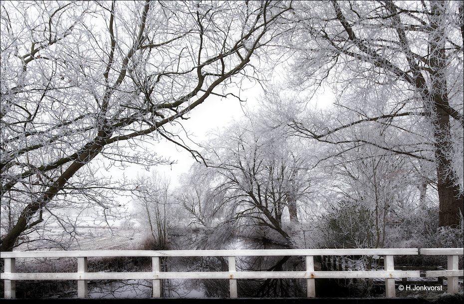 ruige rijp, aanvriezende mist, uitvriezende mist, winterweer, Reest, Reestdal, rijpaanslag, extreme rijpaanslag, rijp