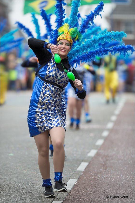 Carnaval Raalte 2017, Carnavalsoptocht Raalte 2017, Carnaval Raalte, Carnavalsoptocht Raalte, Carnaval Nederland 2017, Sallandse Carnavalsoptocht 2017, De Stöppelkaters