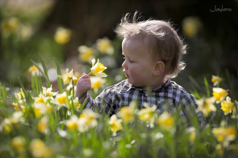 bloemen houden van mensen, mensen houden van bloemen, narcissen, narcis, kinderfotografie, kinderen fotograferen, natuur ontdekken, bloemen ontdekken, Jaylano