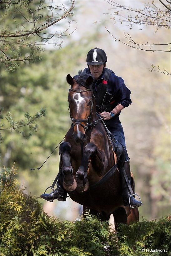 Boscross Staphorst, Bosrit Staphorst, Boscross Staphorst 2017, bosrit Staphorst 2017, Oefencross, Oefencross Staphorst 2017, Eventing, Eventing Staphorst, bosrit voor paarden en pony's
