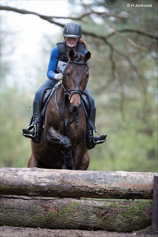 Military Staphorst, Eventing, Eventingwedstrijd, eventing wedstrijd, Boscross Staphorst, Boscross, Boscross Staphorst 2017, Paardensport, Sport, Zwarte Dennen