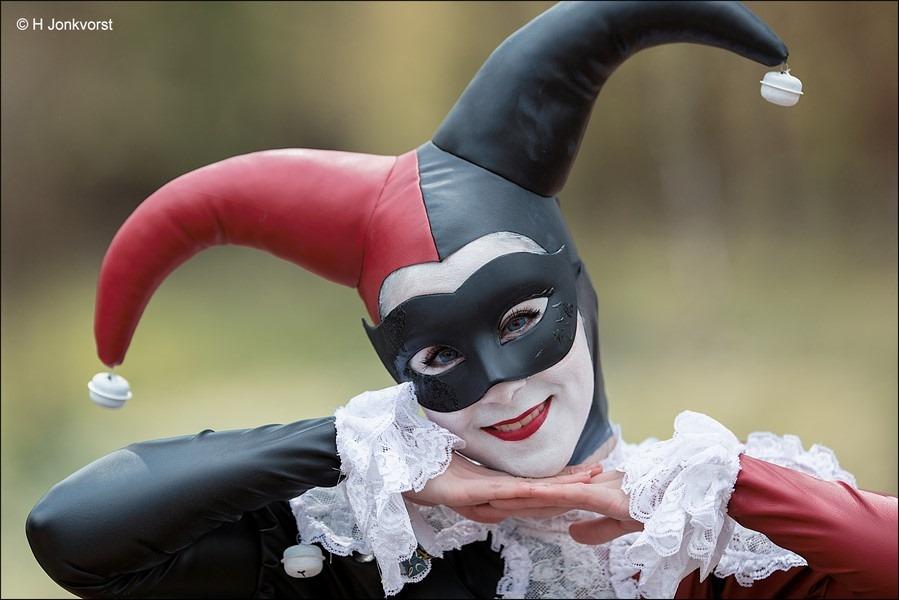 Elfia, Elfia 2017, Elfia Haarzuilens, Elfia Haarzuilens 2017, Fantasy festival, elf fantasy fair, kasteel de haar, portret, portretfotografie, zien en gezien worden, gekostumeerd feest, Joker