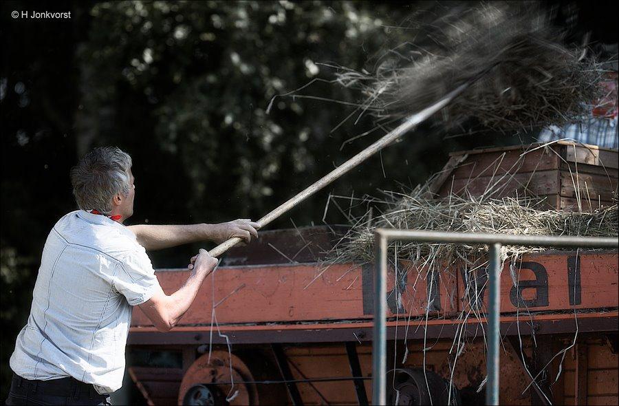 Staphorst, bek vol stro, roggedorsen in Staphorst, Rogge Dorsen, Dorsmachine, antieke dorsmachine, ambachtelijk dorsen