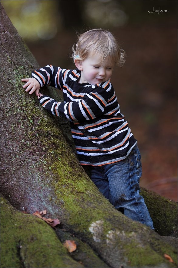 boompje klimmen, klimmen in bomen, in bomen klimmen, jong geleerd, spelen in het bos, Kinderfotografie, Kinderen fotograferen, Jaylano