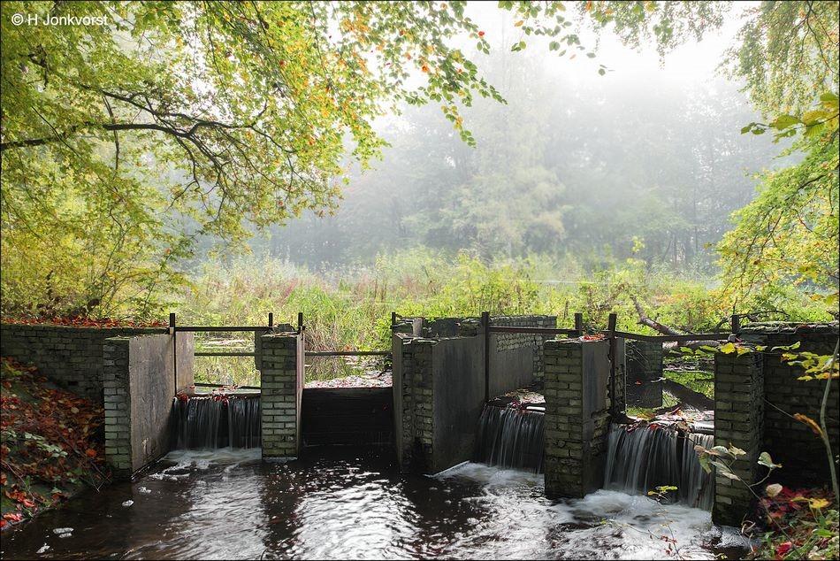 Waterloopbos, Waterloopbos Noordoostpolder, het ruisende bos, het bruisende bos, waterloopkundig laboratorium Delft, Natuurmonumenten, Natuurmonumenten Waterloopbos, waterwerken, schaalmodellen waterwerken