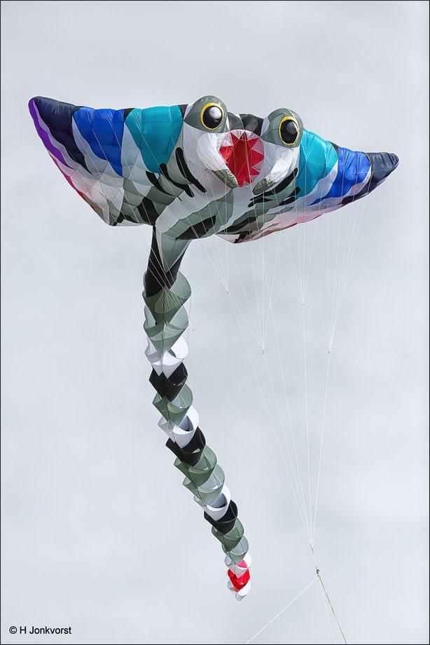 De grootste vlieger, grootste vlieger, vliegerfeest Emmen, vliegerfestijn Emmen, vliegerfeest, vliegerfestijn, internationaal vliegerfeest, vliegeren, professionele vlieger, manta vlieger