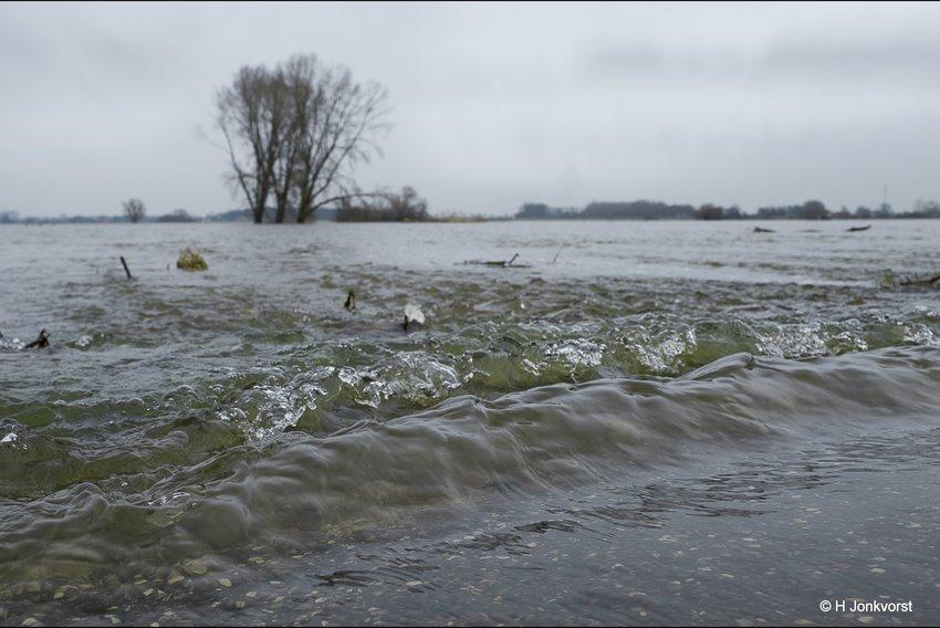 Het ultieme belevingsgevoel, Watersnood, kolkende rivier, kolkend water, snelstromend water, stromende rivier, vernietigende krachten, hoogwater IJssel, hoogwater rivieren, landschapsfotografie, landschap rivier