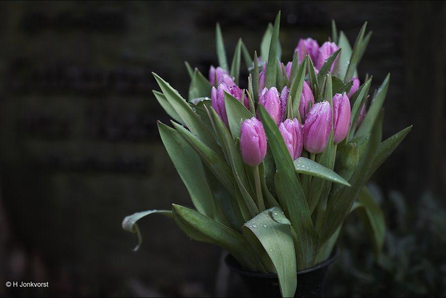 Bloemen op je graf, Bloemen op een graf, bloemen op het graf, grafbloemen, grafboeket, rouwbloemen, rouwboeket, rituelen, stof tot nadenken