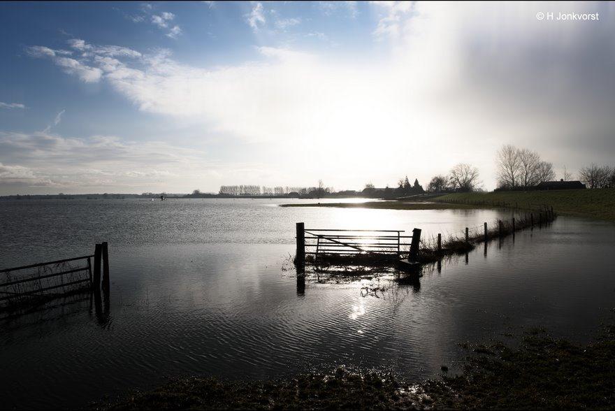 Hekwerk, Tegenlicht, Hoogwater IJssel, Hoogwater Zalk, hoogwater rivieren, Hoogwater Nederland, Uiterwaarden IJssel, Hoogwater