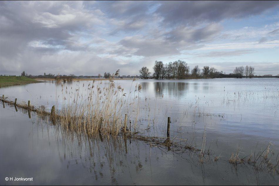 Het water zakt, Het waterpeil daalt, Hoogwater Zalk, Hoogwater IJssel, Hoogwater Rivieren, Hoogwater Nederland, Hoogwater Uiterwaarden, verdronken land, Landschap water, Landschap Hoogwater