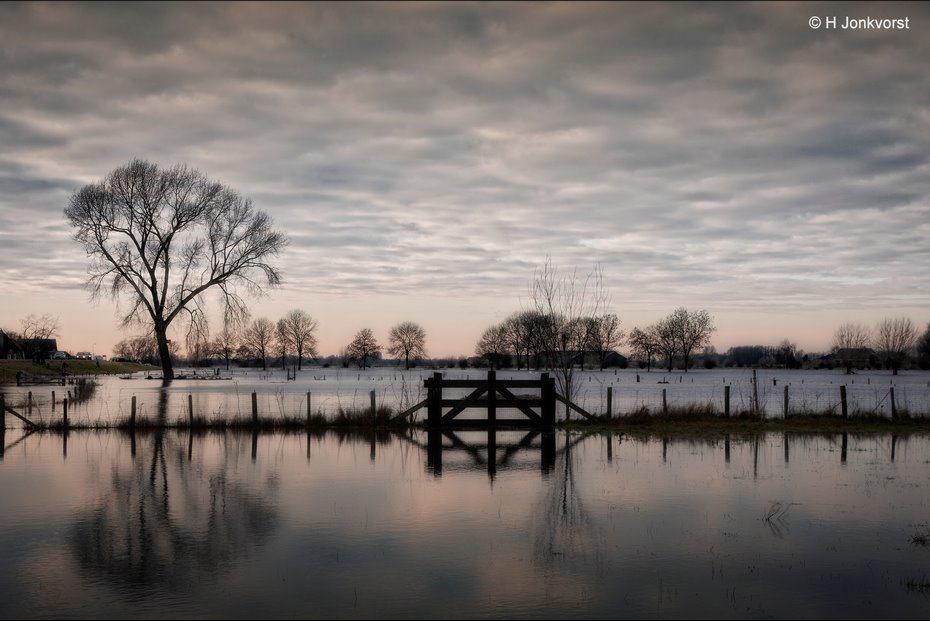 waterspiegel, hoogwater, Hoogwater Nederland, hoogwater rivieren, Hoogwater IJssel, landschap, Landschapsfotografie, Hoogwater Zalk, Ondergelopen land