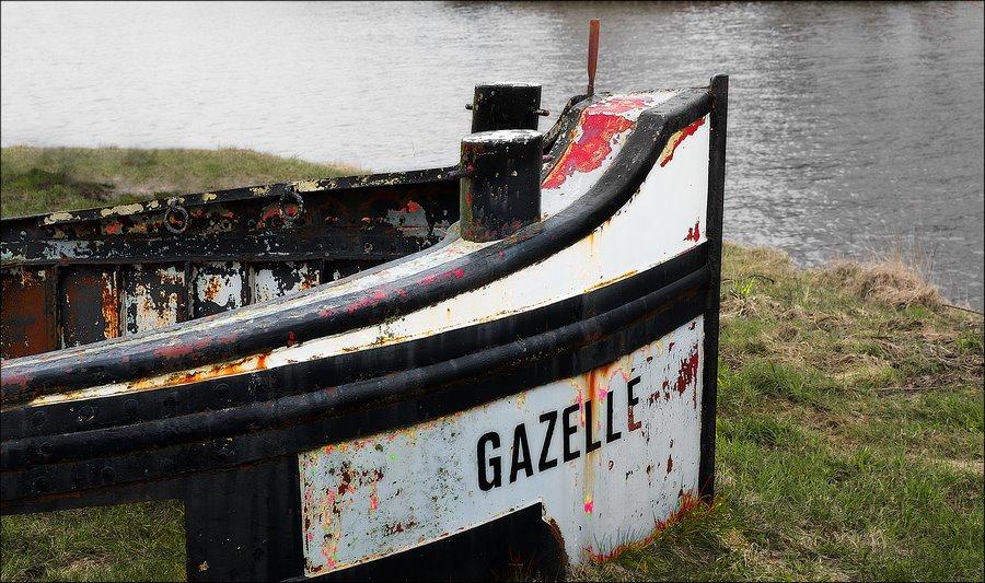 vastgelopen, scheepsmonument, ingegroeid, vergroeid, Gazelle, niet vooruit te branden, scheepswrak, kunst langs de oever, Fotografie, Foto