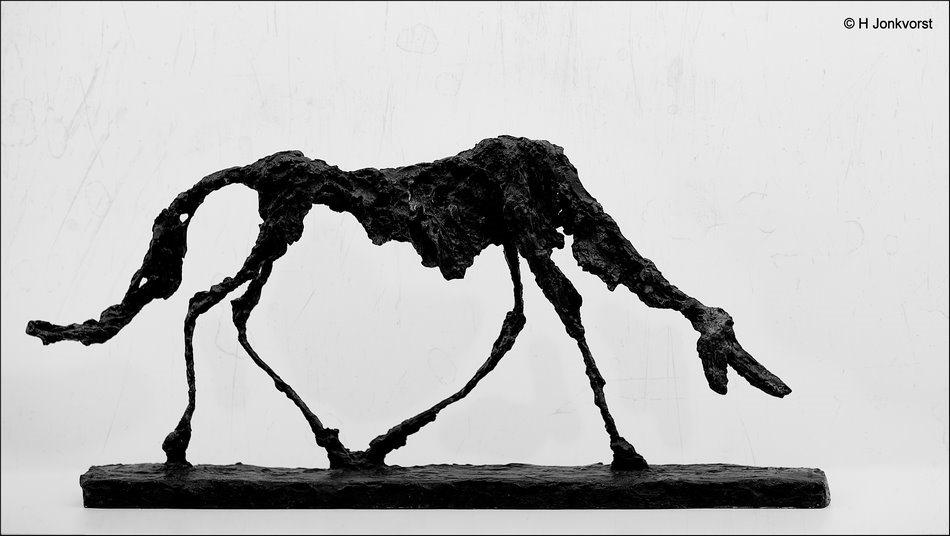 Museum de Fundatie Alberto Giacometti, Museum de Fundatie, Alberto Giacometti, Alberto Giacometti - Dog Facing Fear, Expositie Facing Fear, Kunst, Fotografie, Foto, Canon EF 85mm f1.2L II USM