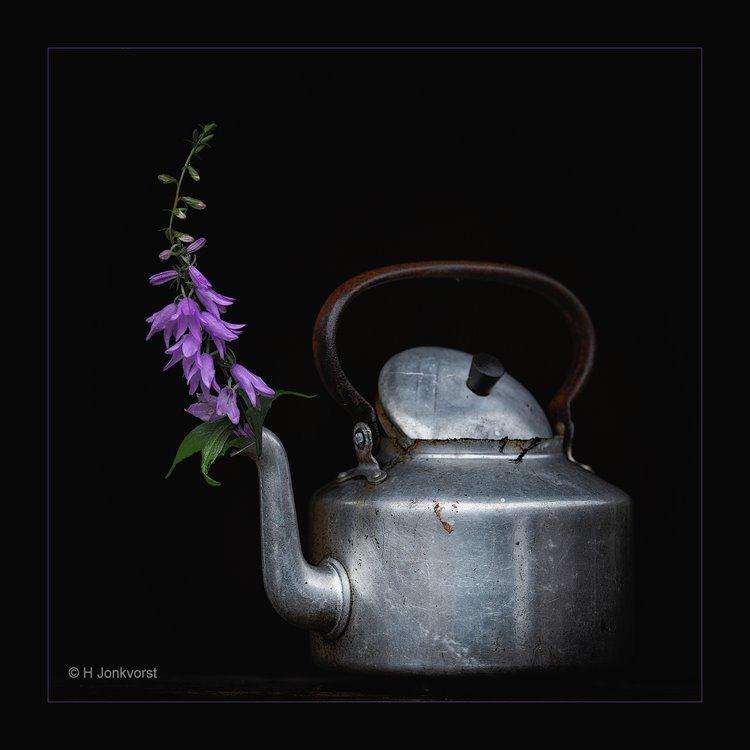 bloempot, Stilleven, flower pot, theeketel, oude ketel, oude theeketel, stilleven fotograferen, stilleven fotografie, Canon 5D MK III, Fotografie, Foto