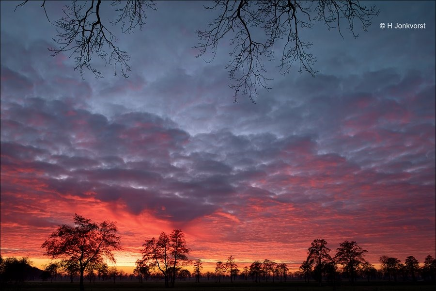 Een vurig Staphorsterveld, zonsondergang Staphorst, Staphorst, vurig spektakel, zonsondergang, Landschap Staphorst, Zonsondergang Fotograferen, Fujifilm XT2, Fujinon XF 16-55mm F2.8 R Lm Wr, Fotografie, Foto